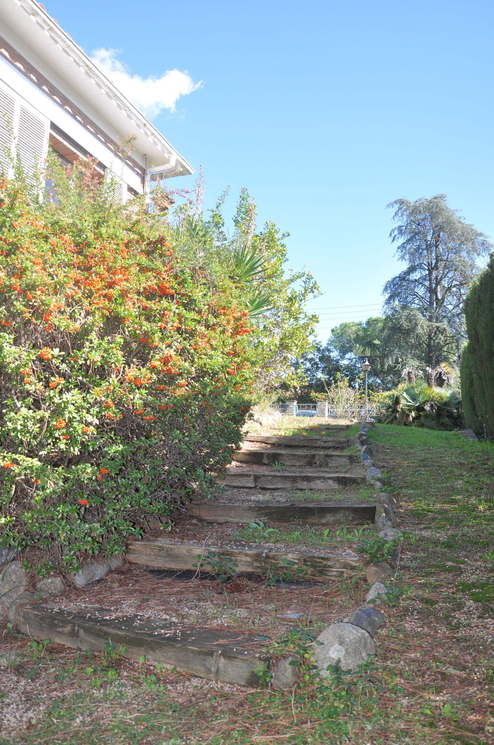 camino jardin lateral Puigllançada 29
